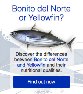 Bonito del Norte or Yellowfin?