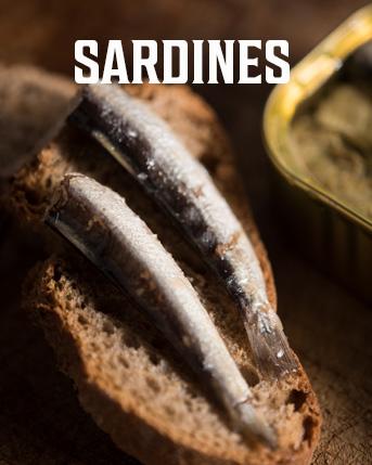 Shop Sardines