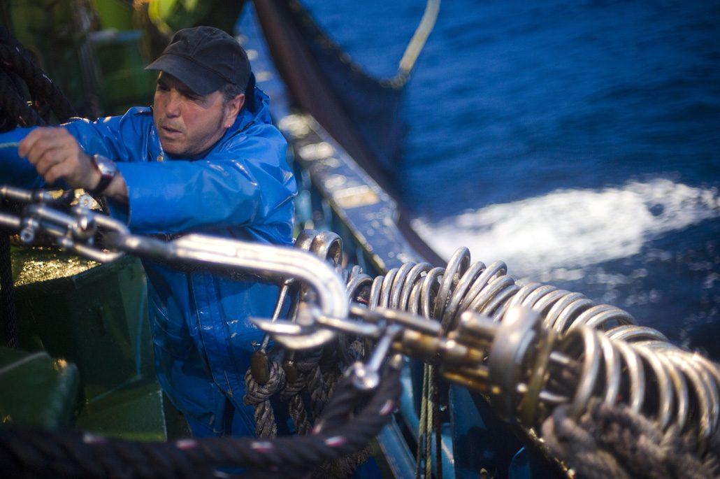 Pesca acciuga a bordo